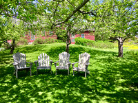 chairs under the apple trees